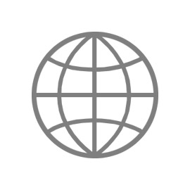 Icon of a globe used for Global Managed Services
